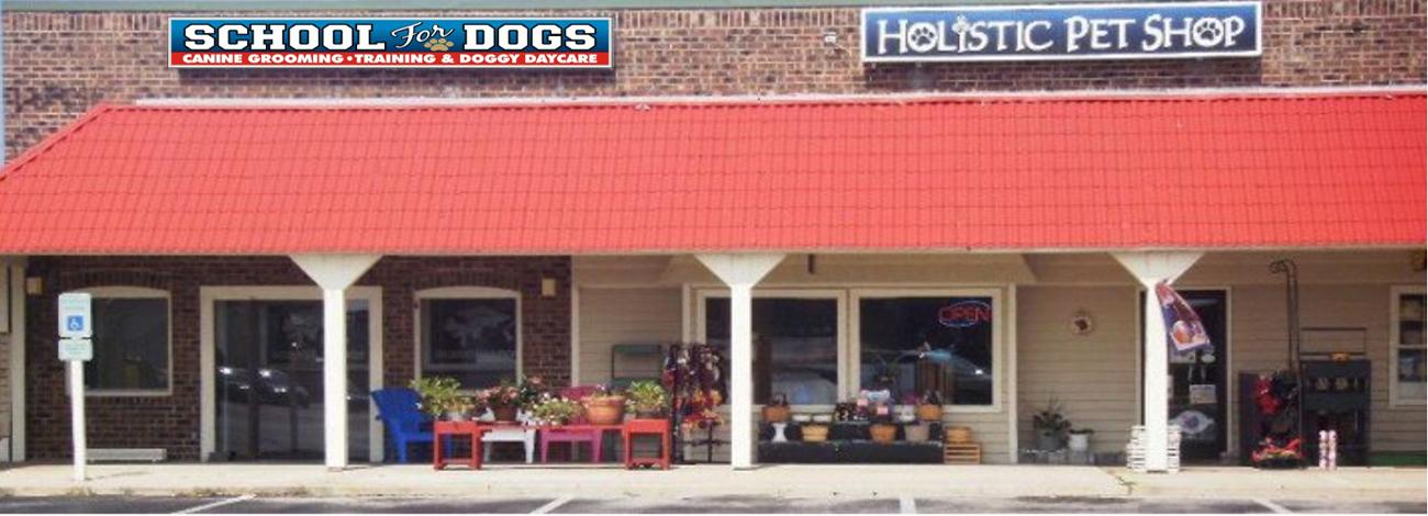 SCHOOL FOR DOGS CHANGE 002lk
