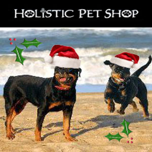 The Holistic Pet Shop http://thecyberdogusa.com