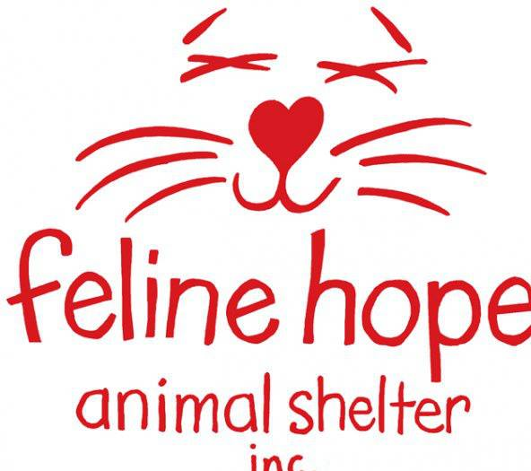 Feline Hope Animal Shelter in Kitty Hawk NC