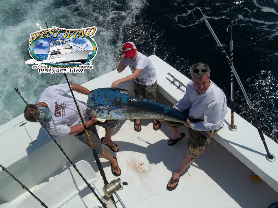 Obx deepsea fishing charters on the west wind with captain for Outer banks fishing
