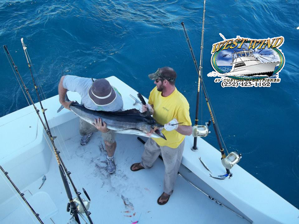 Outer Banks SportFishing on the West Wind with Captain Olan West