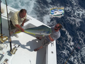 outer-banks-yellowfintuna-f.png