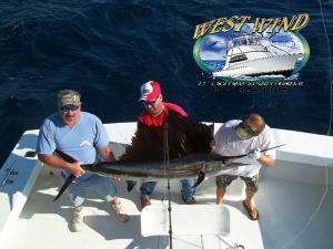 westwind-deepsea-fishing-nc.png