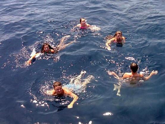 Gulfstream swimming