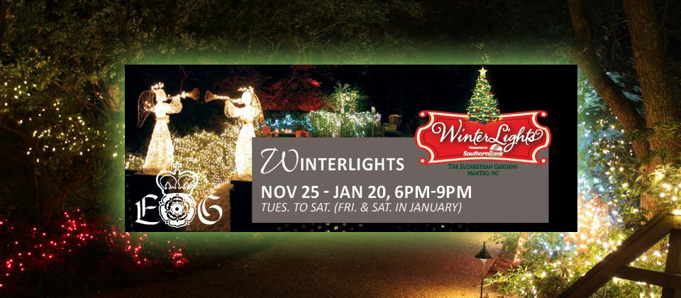 Winter Lights Outer Banks