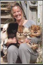Heidis Pomeranian's at Fayrwyne Poms Knotts Island, NC
