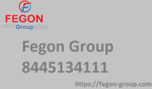 Fegon Group - logo.png